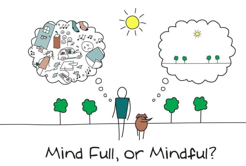 Mindfulness Meditation in the business world helps Managers and other Leaders clear their minds of stress and distorted thinking.